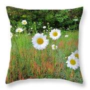 Wild Daisies Throw Pillow