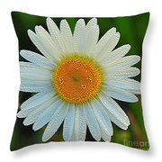 Wild Daisy With Dew Throw Pillow