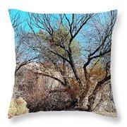 Wild Desert  Throw Pillow