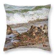 Wild Ducks Throw Pillow