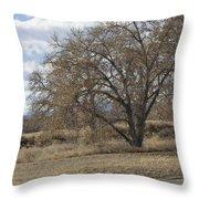 Wild Field Throw Pillow