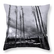 Wild Fire Aftermath In Black And White Throw Pillow