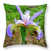 Wild Flag - Iris Versicolor Throw Pillow