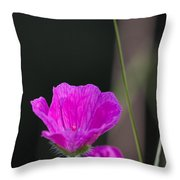 Wild Flower Bloody Cranesbill Throw Pillow