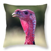 Wild Gobbler Throw Pillow