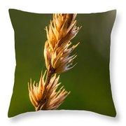 Wild Grass 2 Throw Pillow