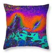 Wild Grasses And Sunset Throw Pillow