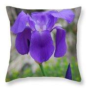 Wild Growing Iris Croatia Throw Pillow