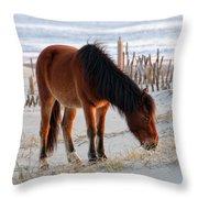 Wild Horse At Sunrise Throw Pillow