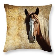 Wild Horse Fade Throw Pillow