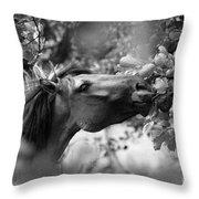 Wild Horse In Dunes Throw Pillow