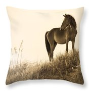 Wild Horse On The Beach Throw Pillow by Diane Diederich