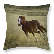 Wild Horse Running-signed-#7273 Throw Pillow