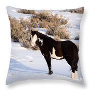 Wild Horse Stallion Throw Pillow