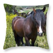 Wild Horses In California Series 4 Throw Pillow