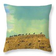 Wild Horses Monument Throw Pillow