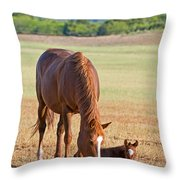 Wild Horses Mother And Baby Throw Pillow