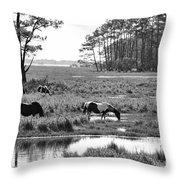Wild Horses Of Assateague Feeding Throw Pillow by Dan Friend