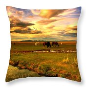 Wild Lands Of Nevada  Throw Pillow by Jeanne  Bencich-Nations