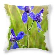 Wild Larkspurs Throw Pillow
