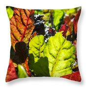 Wild Lettuce Throw Pillow