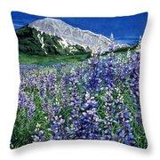 Wild Lupine Throw Pillow