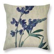 Wild Lupine Throw Pillow by Priska Wettstein