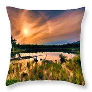 Wild Maine Woods In Baxter State Park Throw Pillow