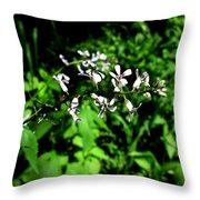 Wild Missouri Flowers Throw Pillow