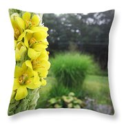 Wild Mullein Throw Pillow