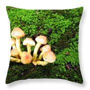Wild Mushrooms Throw Pillow