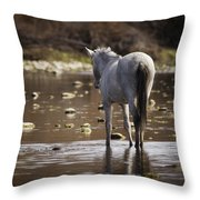 Wild Mustang On The River  Throw Pillow