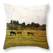 Wild Mustangs Carpe Diem Throw Pillow