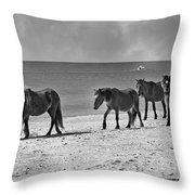 Wild Mustangs Of Shackleford Throw Pillow