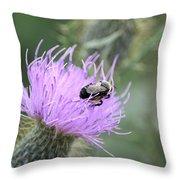 Wild Nectar Throw Pillow