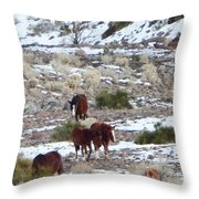 Wild Nevada Mustangs 2 Throw Pillow