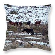 Wild Nevada Mustangs Throw Pillow