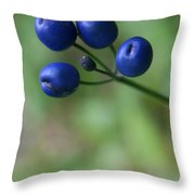 Wild New Hampshire Bluebead Lily Throw Pillow