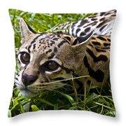 Wild Ocelot Throw Pillow