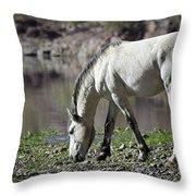 Wild On The River  Throw Pillow