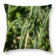 Wild Onion Grasp Throw Pillow