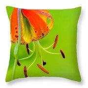 Wild Orange Lilies Throw Pillow