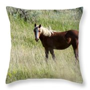 Wild Palomino Throw Pillow by Sabrina L Ryan