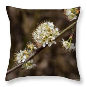 Wild Pear Throw Pillow