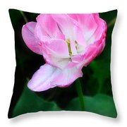 Wild Pink Rose Throw Pillow