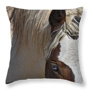 Wild Pinto Throw Pillow
