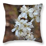 Wild Plum Blooms Throw Pillow