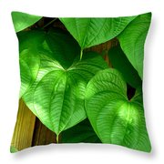 Wild Potato Vine Throw Pillow