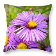 Wild Purple Asters Throw Pillow