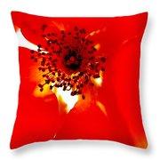 Wild  Red Rose Extrem Macro Throw Pillow